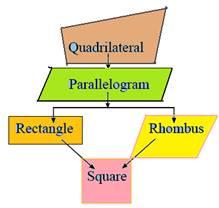 Quadrilateral, rectangle, square, parallelogram, rhombus