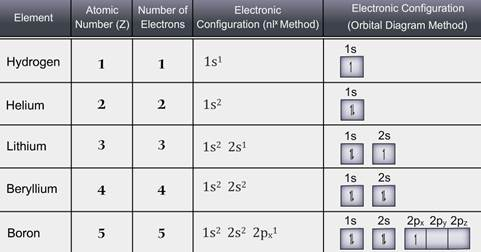 Cbse class 11 chemistry electronic configuration lessson electronic configuration of the first ten elements hydrogen helium lithium beryllium boron carbon nitrogen oxygen fluorine and neon given in urtaz Gallery