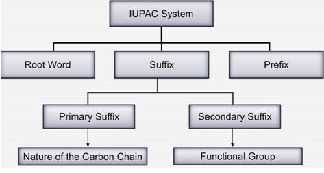 Nomenclature Of Hydrocarbons-CBSE Class 10 Science-NextGurukul